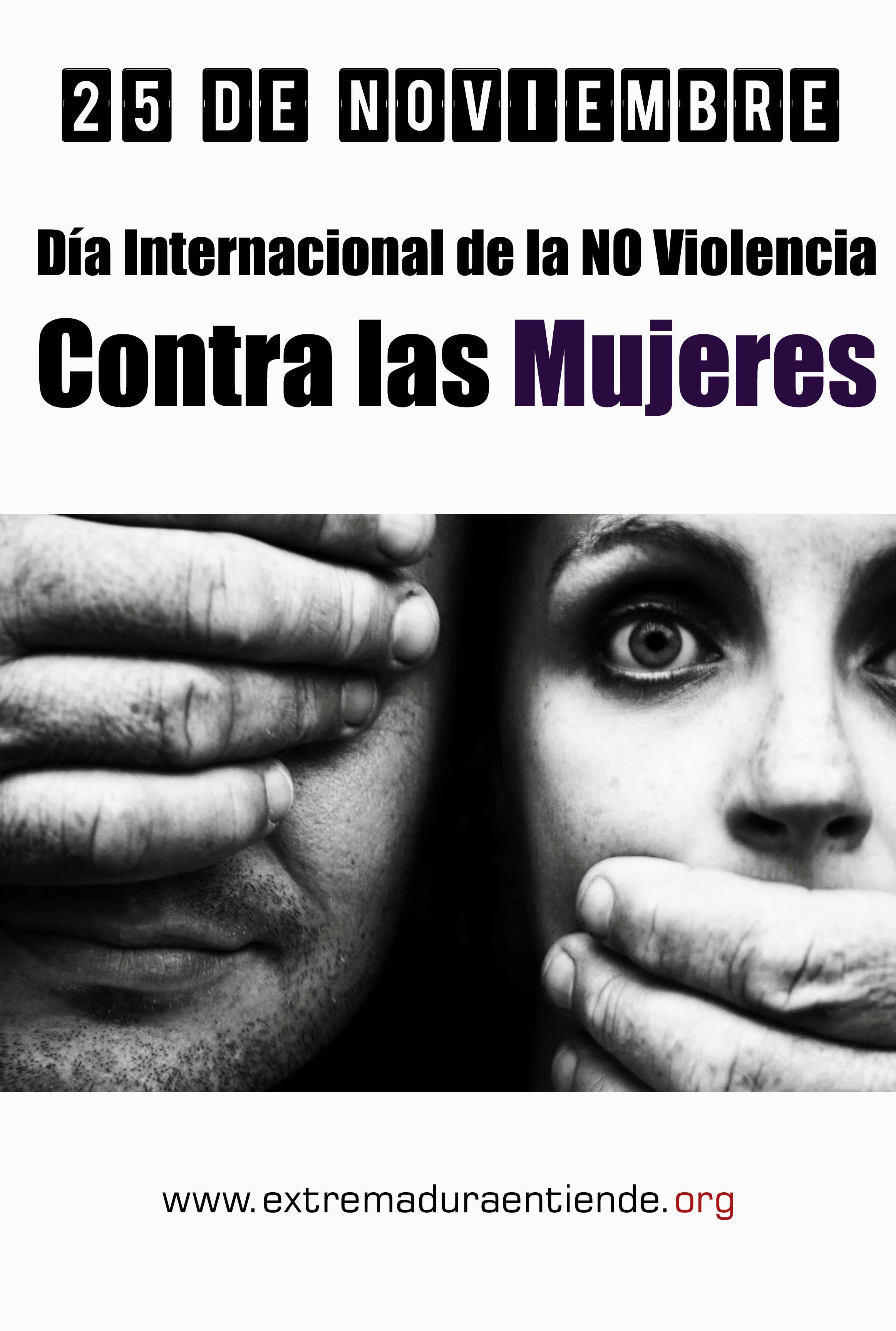 Violencia machista 2013 copia